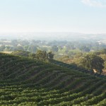 paso-robles-wine-country-6