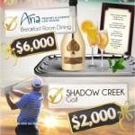 ARIA-Infographic-9-265x300