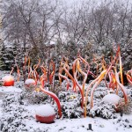 chihuly-garden-glass5