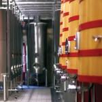 love-first-site-city-wine-spain-rioja-region-2015G