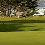1bpacific-grove-golf-links3