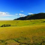 a_Wild-Horse-Ranch-DJI00977_Mountains