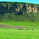 a_Wild-Horse-Ranch-DSC9979HorseCliff