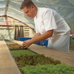 Executive Chef Daven Wardynski Planting in The Sprouting Project 2_Omni Amelia Island Plantation Resort_High Res