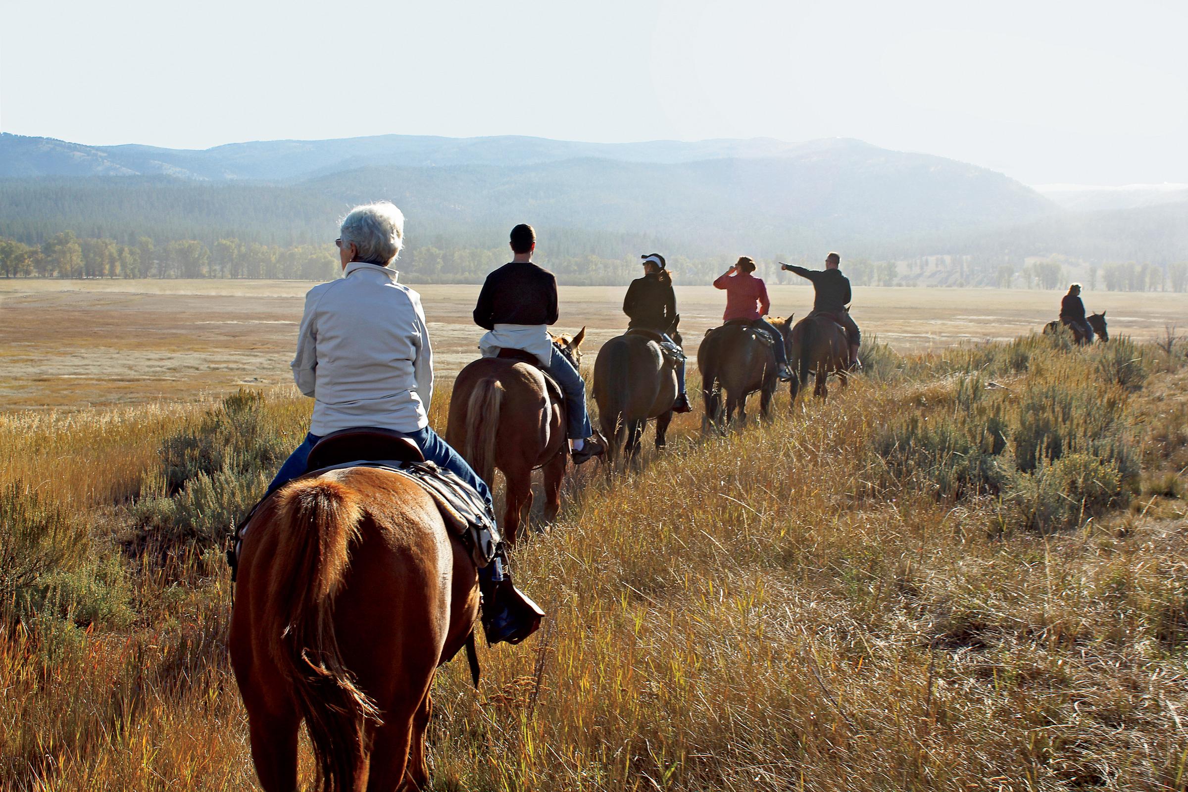 pawsup-horseback