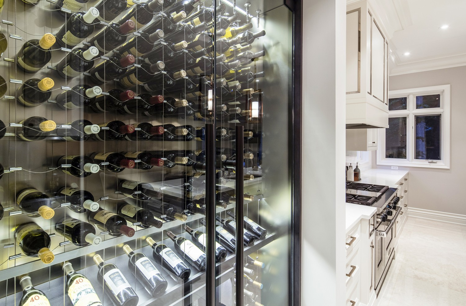 sml7 Custom Papro wine cellar with cable wine system tsa7