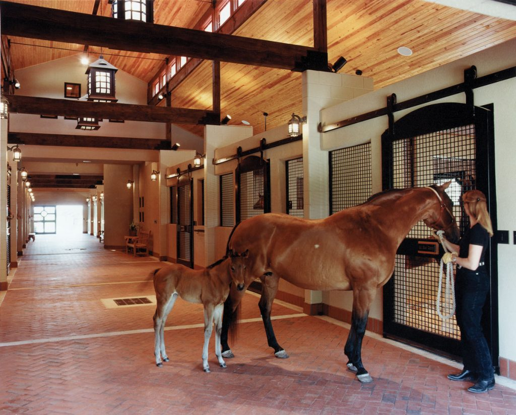 Lucas Equine Equipment Luxury Horse Stalls