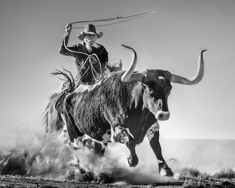 Ain't My First Rodeo: Texas, USA - 2021